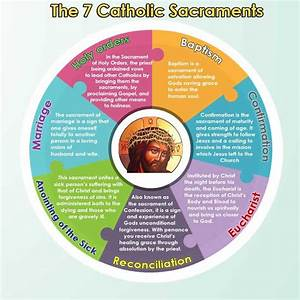 The Seven Sacraments Of The Catholic Church  Infographic