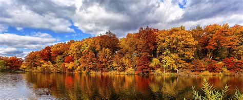 wallpaper autumn forest lake  nature