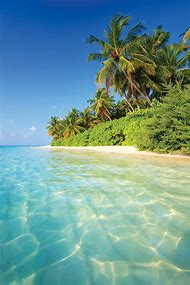 Beautiful Tropical Beach Landscapes