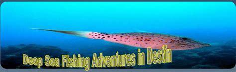 Deep Sea Fishing Boats For Sale Destin Florida by Deep Sea Fishing In Destin