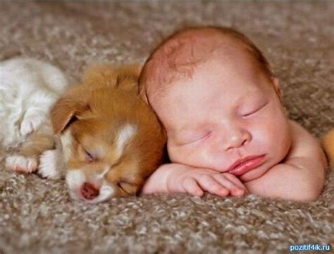 33 Cute Pictures Of Puppies And Babies Being Super Cute