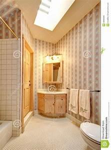 Salle De Bain Etroite : int rieur troit lumineux de salle de bains photo stock image 38699386 ~ Melissatoandfro.com Idées de Décoration