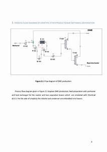 Dme Plant Project  Final Report