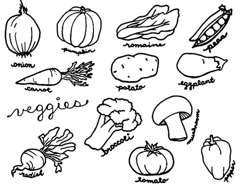 vegetables drawing  kids  getdrawings