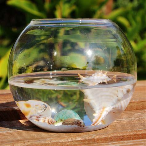 transparent fish tank hydroponics glass vase fleshier plant vase brief aquarium decoration