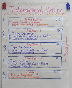 spider web creative writing creative writing graduate programs boston victorian houses primary homework help