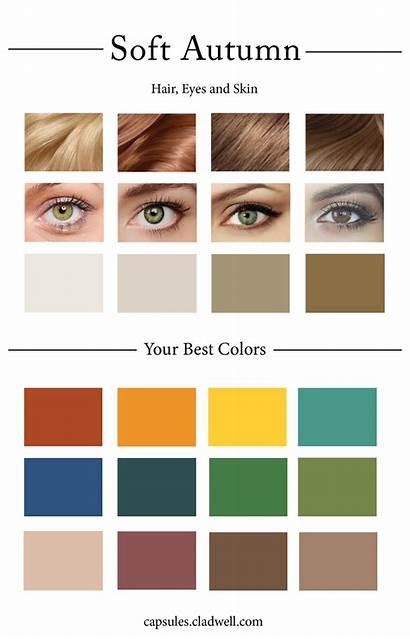 Autumn Soft Palette Colors Create Quiz Hair