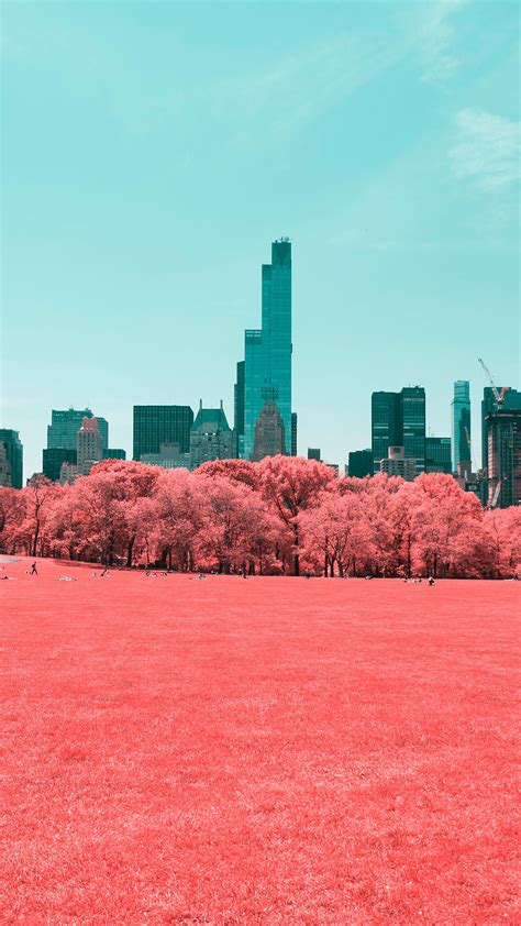 wallpaper central park infrared manhattan  york city
