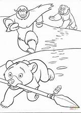 Coloring Bear Inuit Spear Steals Eskimo Weapon Drawing Printable sketch template