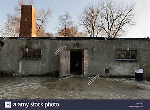 Gas Chambers in Concentration Camps - Bing images