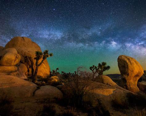 starry sky joshua tree national park usa hd wallpaper