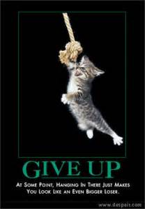 cat posters picture clip happy cat motivational poster