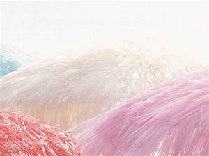 Jan Kurtz Sonnenschirm : jan kurtz hawaii sonnenschirm mit knickgelenk natur wei orange pink garten outdoor ~ Heinz-duthel.com Haus und Dekorationen