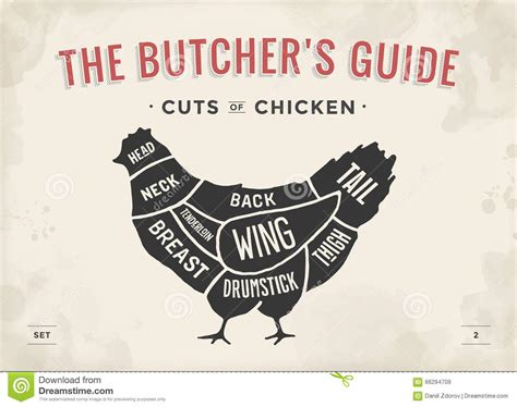 cut of meat set poster butcher diagram and scheme chicken vintage typographic hand drawn
