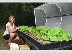 Large Raised Garden Bed with Garden Cover – Vegepod Australia
