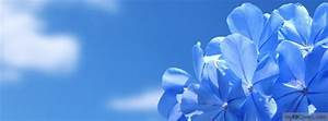 Blue Flowers Facebook Covers - myFBCovers