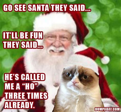 Dirty Christmas Memes - funny grumpy cat meme christmas funny cat pictures
