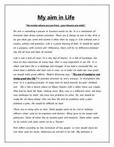 Essay About My Life Funny College Application Essays Essay About My  Essay About My Life History Book Good Synthesis Essay Topics also Health Needs Assessment Essay  Making A Thesis Statement For An Essay