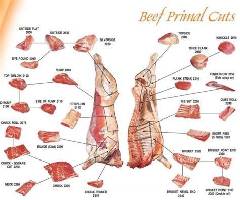 Cooking Light Pork Tenderloin by Meat Cuts Bbqit Bbq Hog Roast Lamb Roast And Other Big