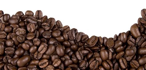 Freepng is a free to use png gallery where you can download high quality transparent png images. Researchers cut coffee cancer risk | Research Features