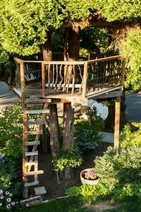 Design Your Dream Backyard Ever Dream Of A Quiet Place In A Tree House
