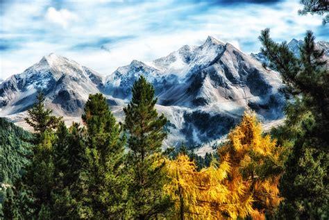 images gratuites paysage arbre la nature region