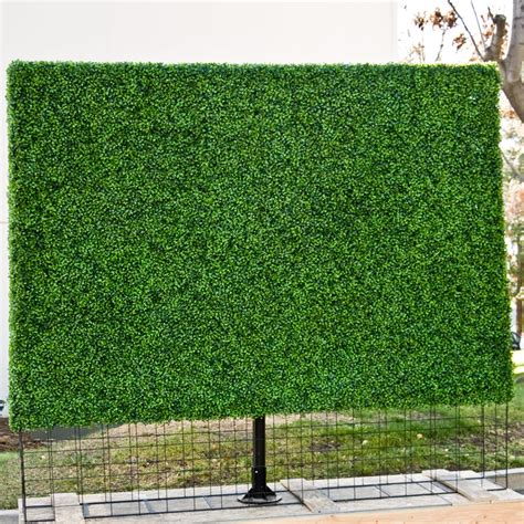 plant privacy screen balcony privacy screen outdoor privacy screens privacy hedges