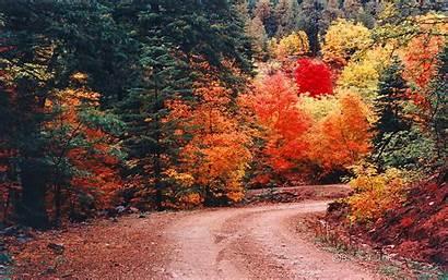 Fall Road Mountain Autumn Desktop Wallpapers Backgrounds