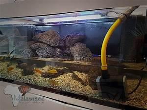 Aquarium Ohne Wasserwechsel : aquarium schlauch wasserwechsel aquarium schlauch wasserwechsel wasserwechsel ohne eimer und ~ Eleganceandgraceweddings.com Haus und Dekorationen