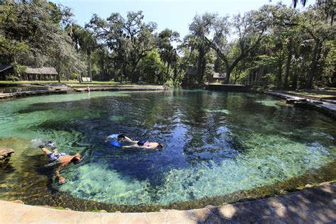 springs florida natural swimming water juniper holes area fletcher silver visit parks things recreation lakes spring fl ocala forest nature