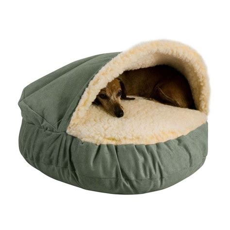 Burrowing Bed by Best Burrowing Beds Breeds Picture