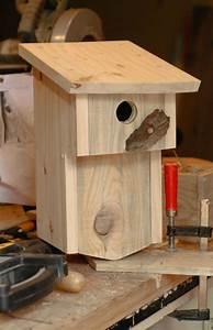 Plan Nichoir Oiseaux : nichoir a balcon 25 photo de les nichoirs plumes et bois ~ Melissatoandfro.com Idées de Décoration
