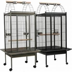Cage A Perroquet : cage pour perruche et perroquet au comptoir de no au comptoir de noe ~ Teatrodelosmanantiales.com Idées de Décoration