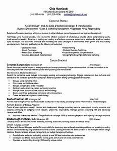 Executive level resume free samples examples format for Executive cv