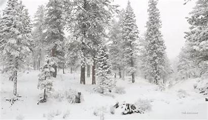 4k Gifs Resolution Winter Snow Christmas Screen