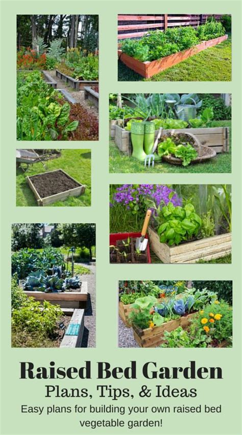 205 best images about vegetable gardening ideas organic