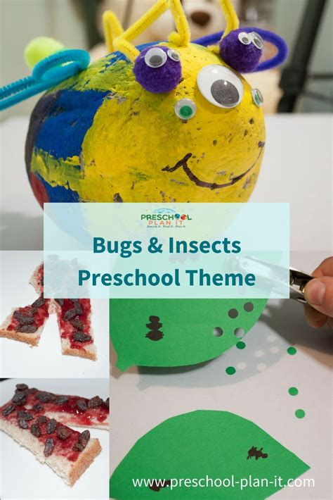 bugs and insects preschool theme 414 | bugs and insects preschool theme