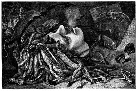 Medusa Quotes What Do Writers Say About Medusa