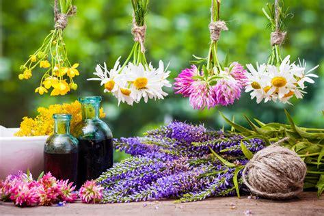 fiori do bach fiori di bach cosa sono propriet 224 utilizzi e