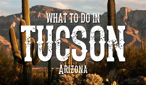 tucson visitors bureau what to do in tucson arizona tucson expo center
