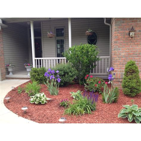 front wood chip flower bed with a few shrubs growing
