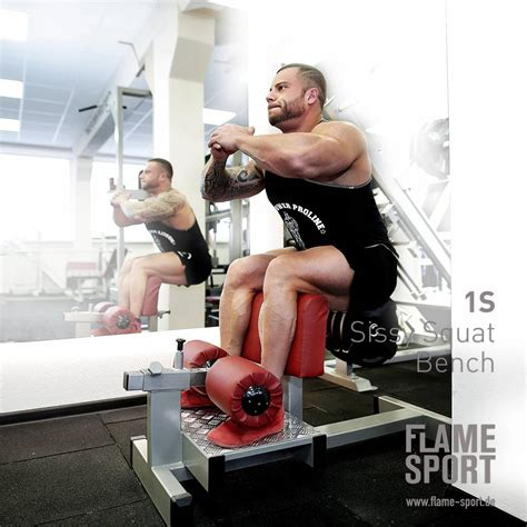 sissy squat bench  flame sport flame sport