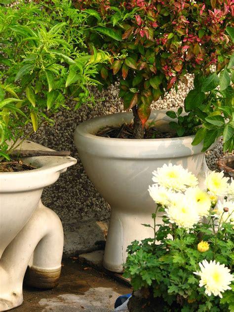 potted plant garden ideas foody s home and garden gazette ghetto garden fabulous 3 desperately seeking containers