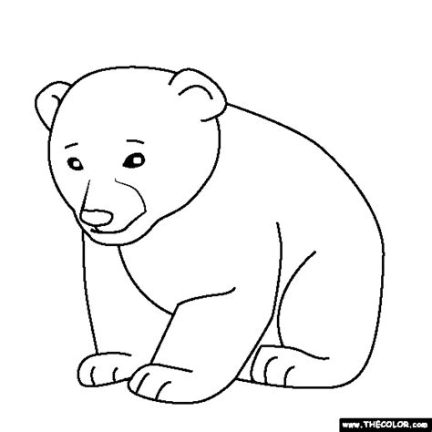 Baby Bear Coloring Pages