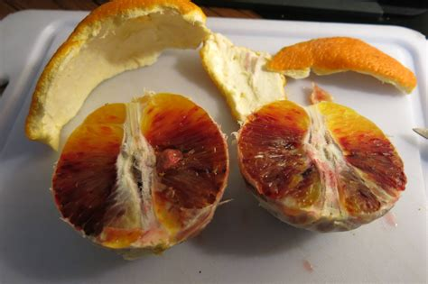 what color is blood inside the food safety can a blood orange be half bloody