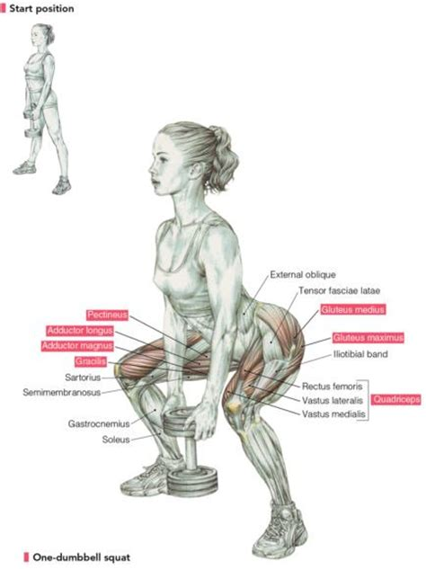 Delavier's Women's Strength Training Anatomy Workouts: The ...