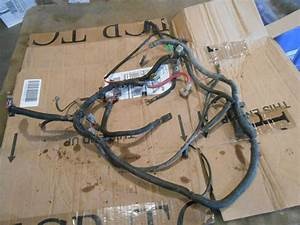 Polaris Magnum 425 1998 2x4 Wiring Harness Loom Wires