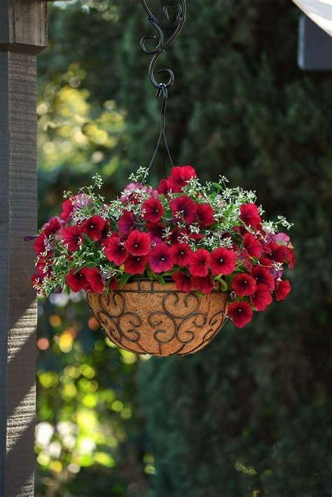 Hängende Blumen Balkon by Beautiful Quot Terrasse Balkon Blumen Garten Und