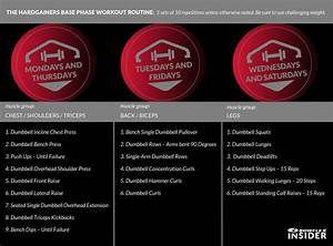 Bowflex Dumbbell Exercise Chart The Hardgainer S Workout Bowflex