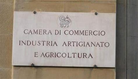 concorso camera  commercio  roma  consulenza